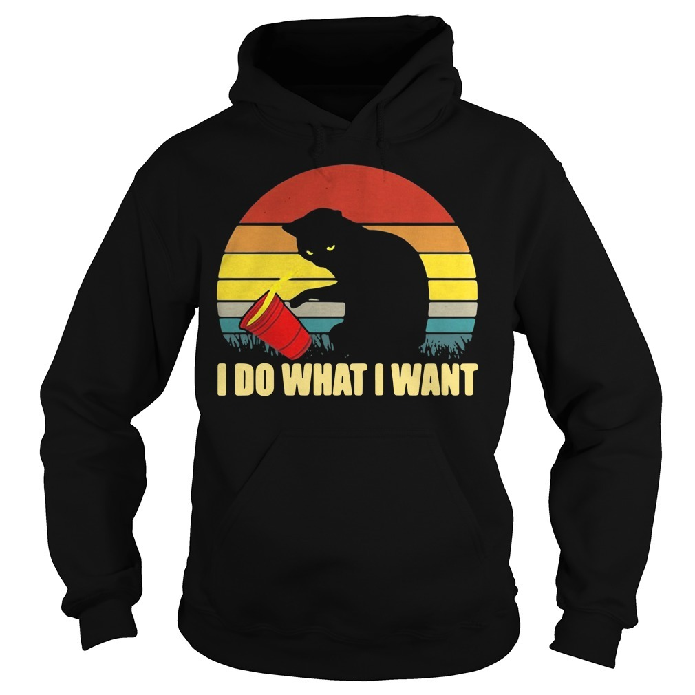 Cat I do what I want sunset Hoodie