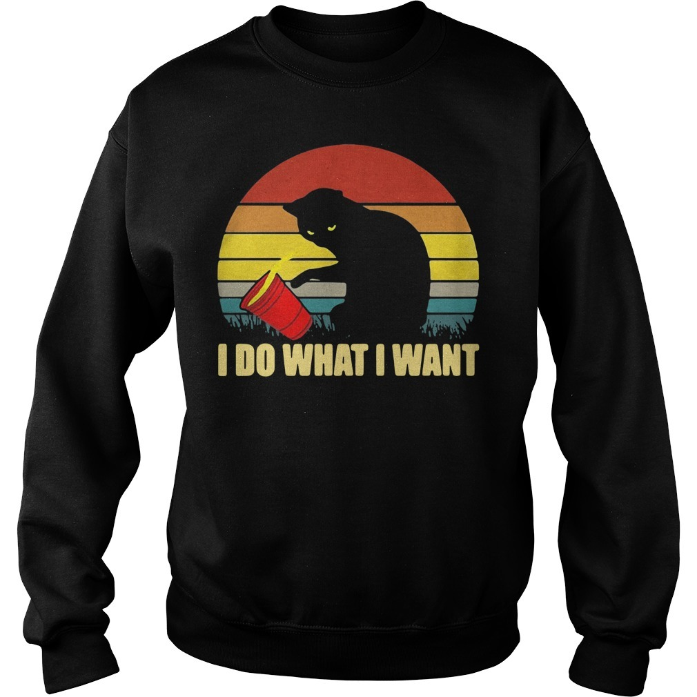 Cat I do what I want sunset Sweater