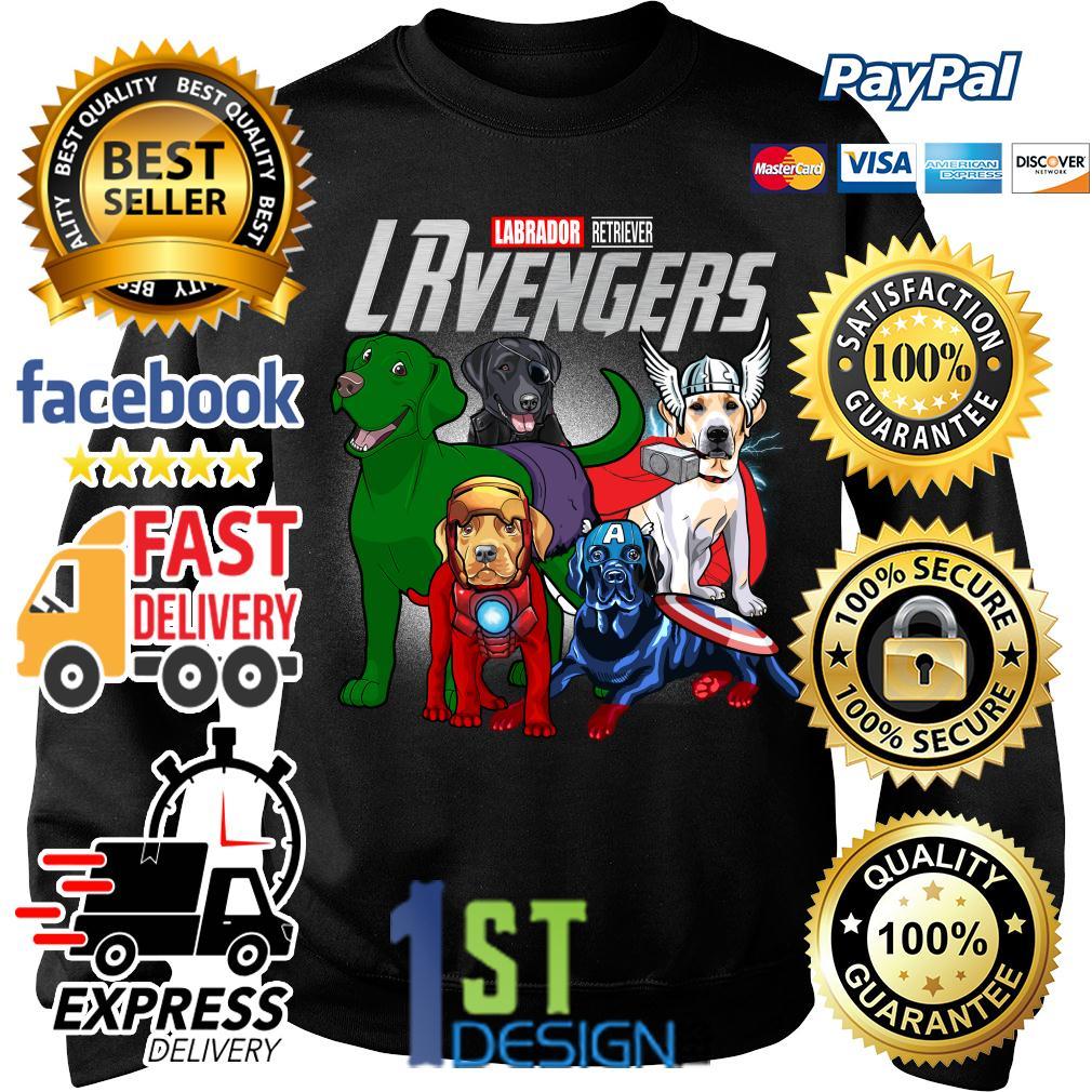 Marvel Labrador Retriever LRvengers Avengers Sweater