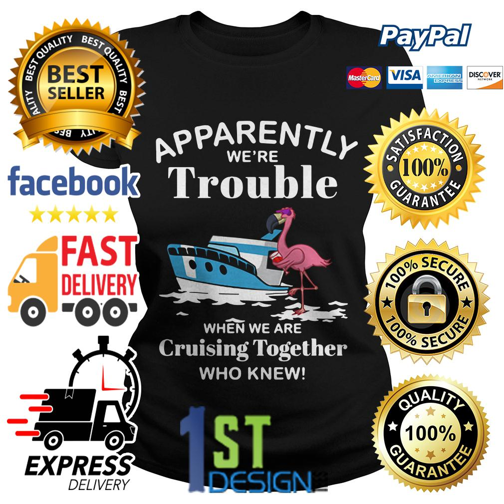 Flamingo apparently we're trouble when we are cruising together Ladies Tee