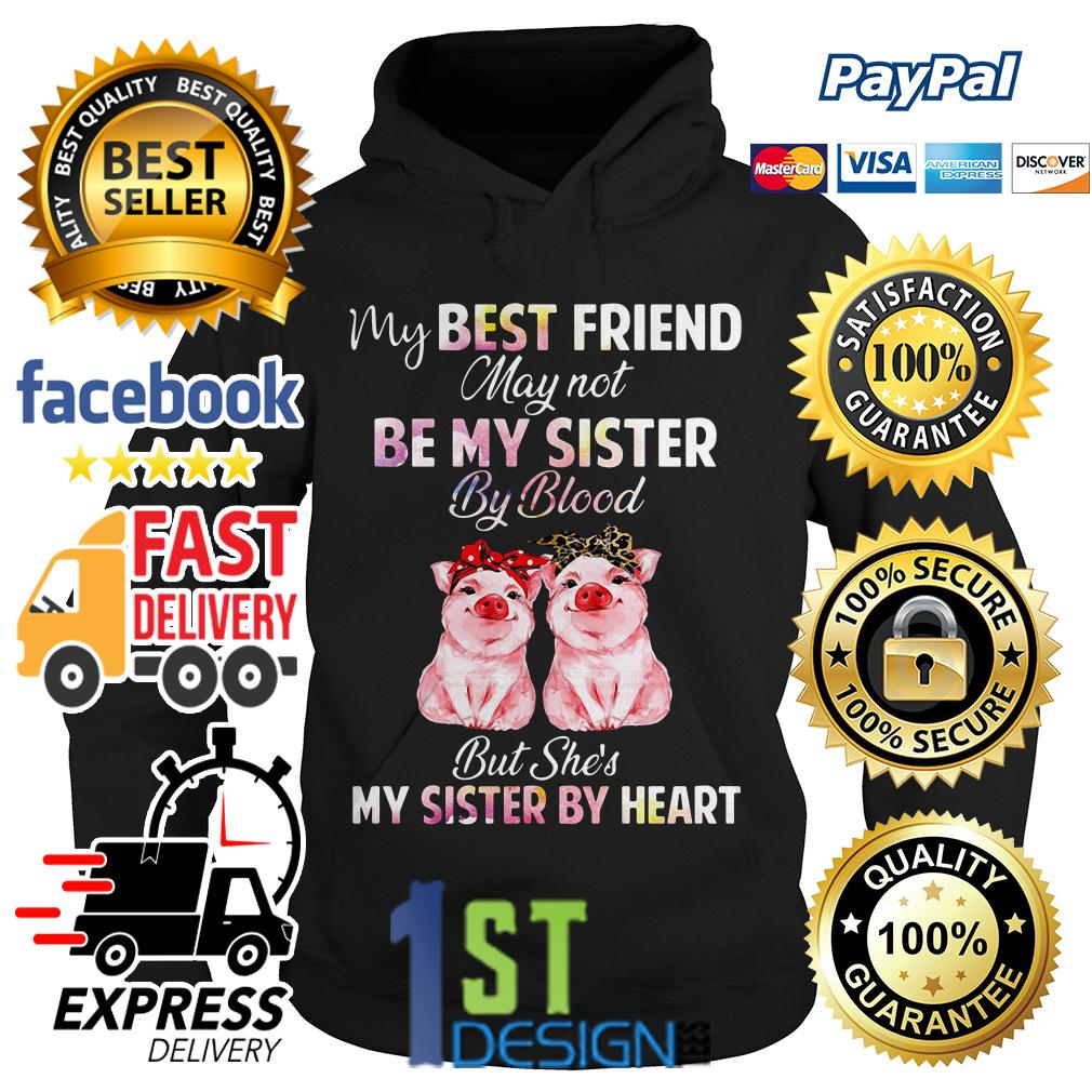 Pig my best friend may not be my sister by blood but she's my sister Hoodie