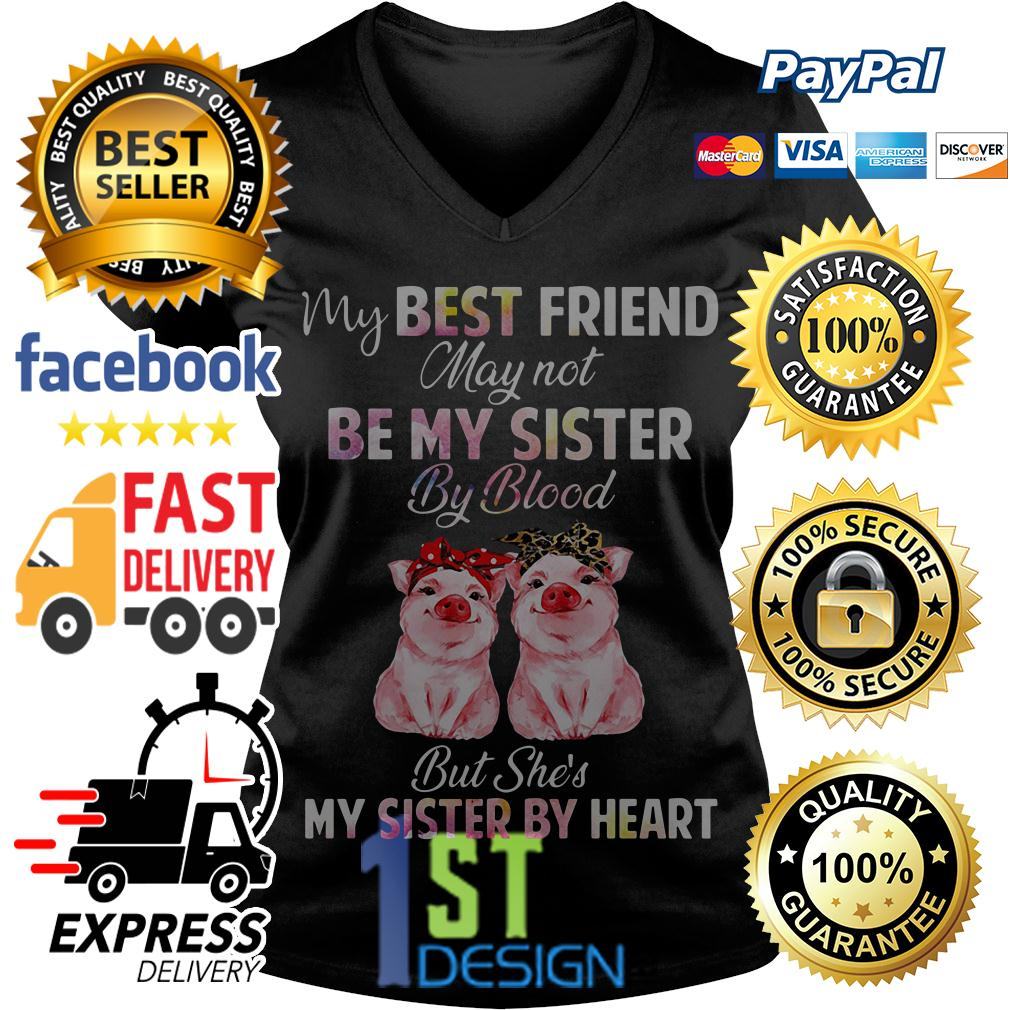Pig my best friend may not be my sister by blood but she's my sister V-neck T-shirt