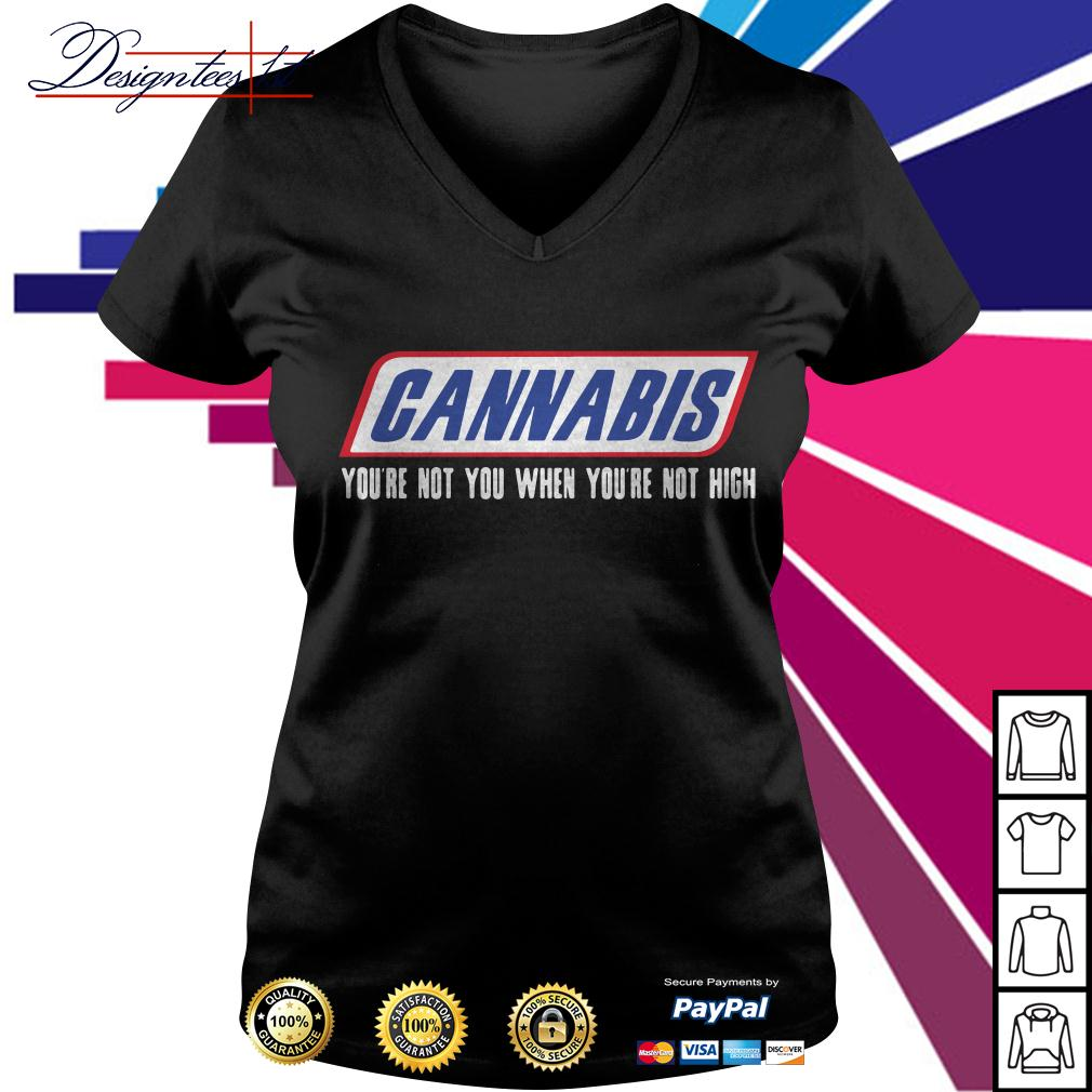 Cannabis you're not you when you're not high V-neck T-shirt
