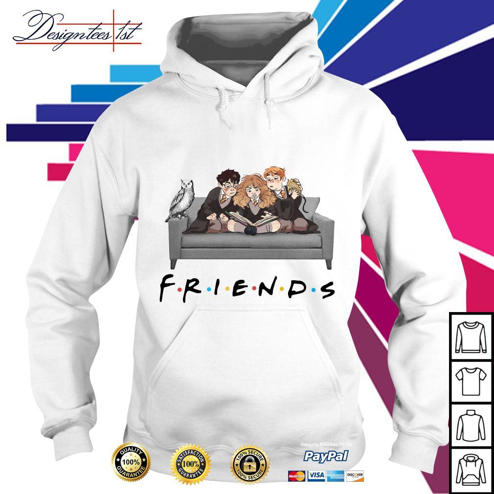 Harry Potter friends TV show Hoodie