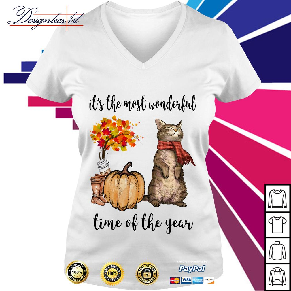 Cat it's the most wonderful time of the year V-neck T-shirt