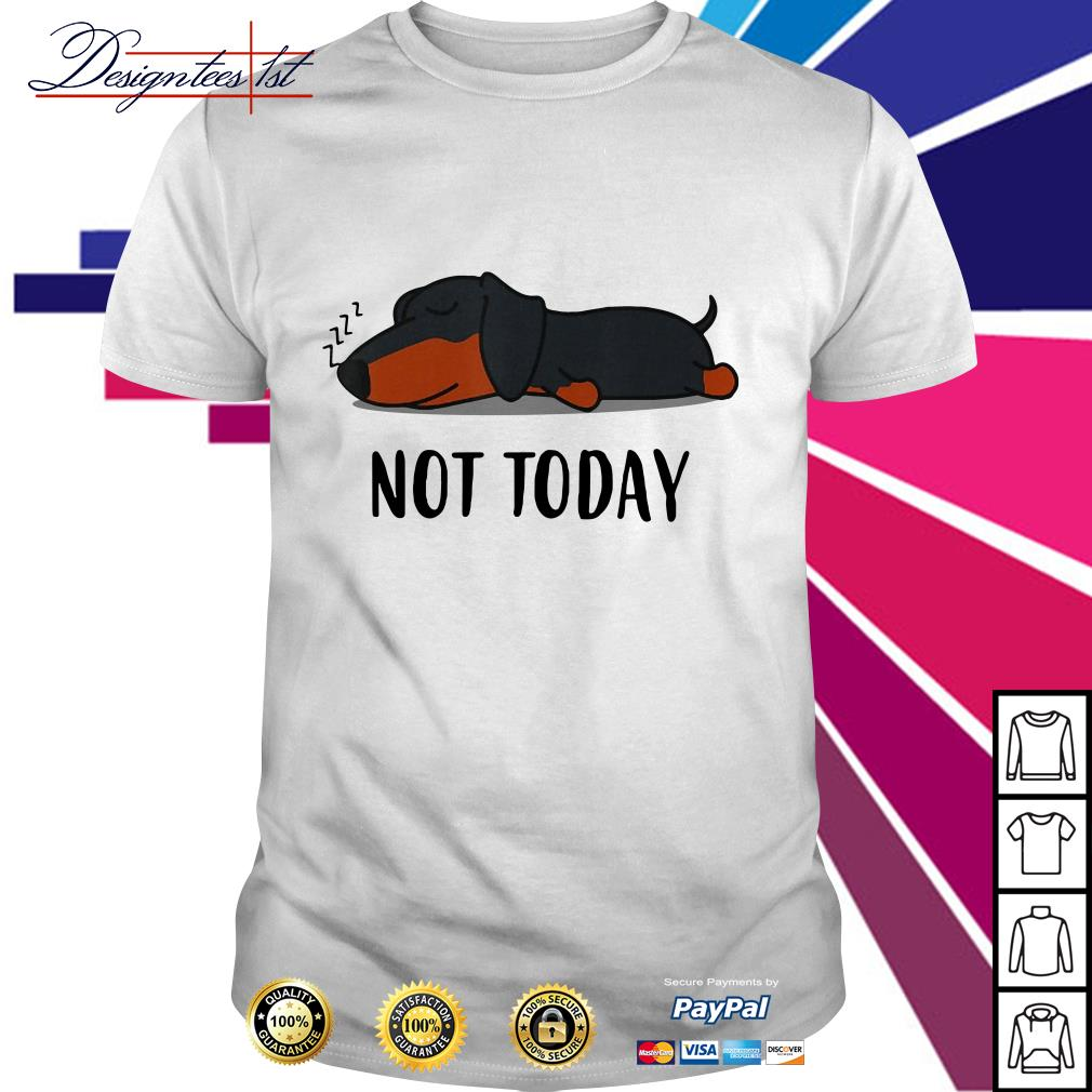 Dog lazy not today shirt