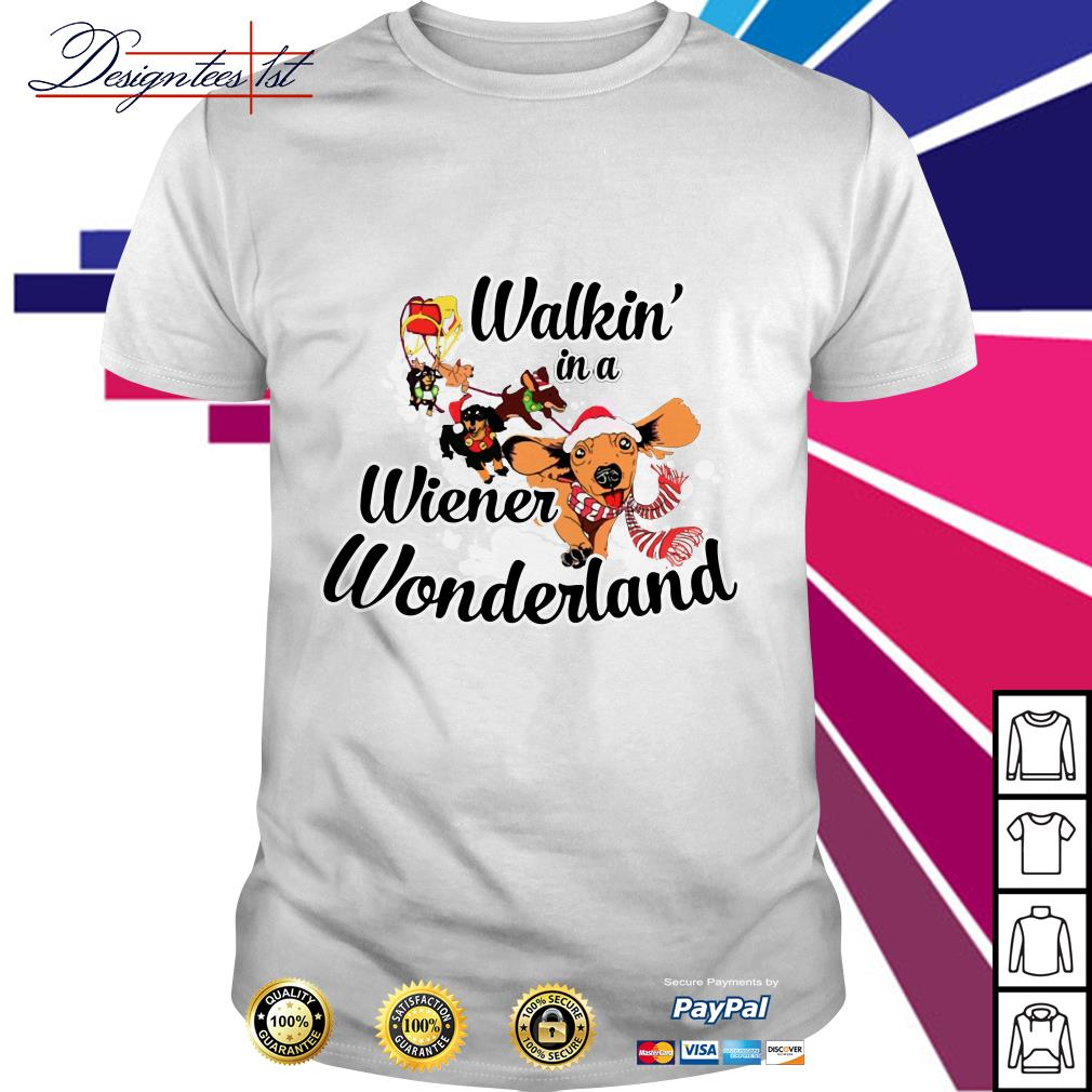 Merry Christmas Dachshund walkin' in a wiener wonderland shirt, sweater