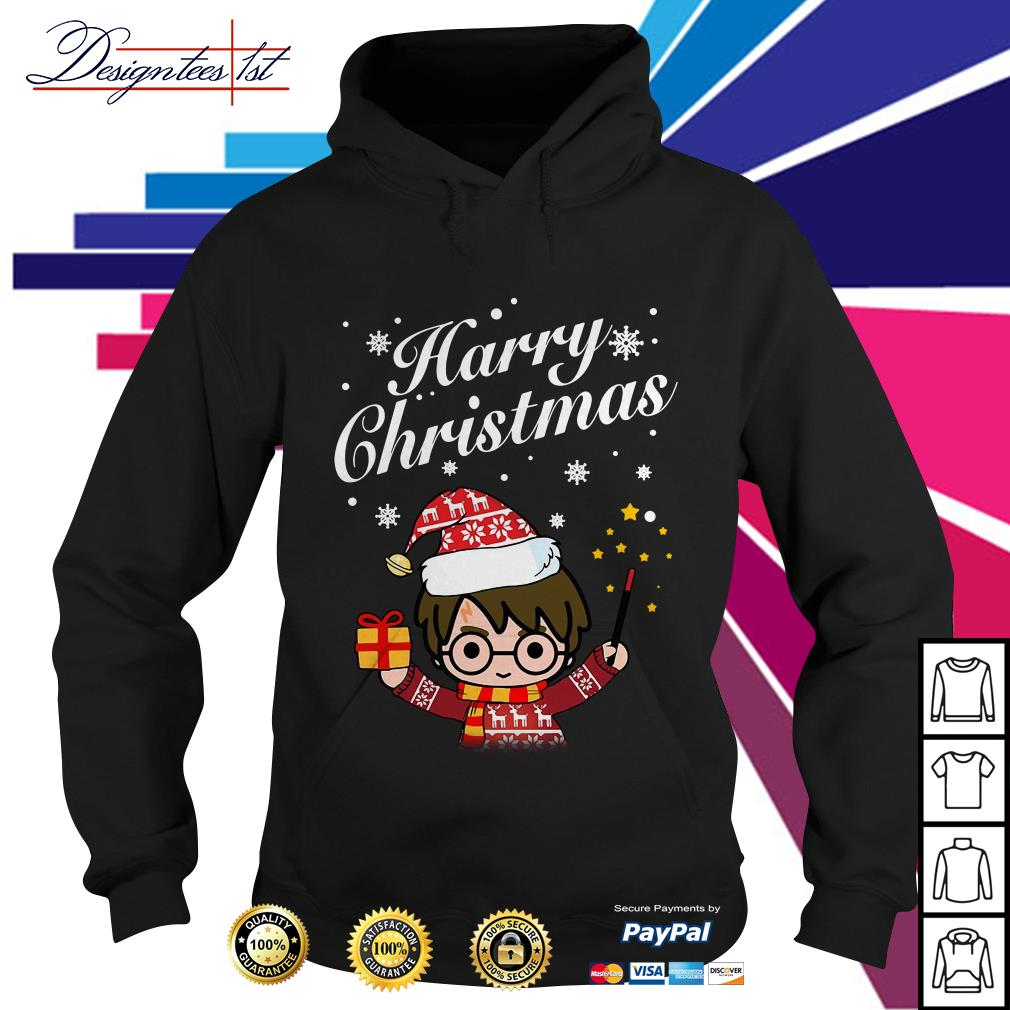 Merry Christmas Harry Potter Harry Christmas Hoodie
